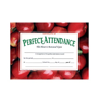 30ct Perfect Attendance Certificates